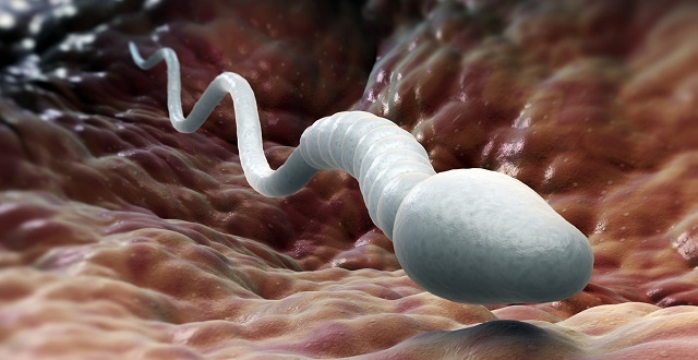 Олигоастенотератозооспермия что это, как лечить и можно ли забеременеть при этом диагнозе